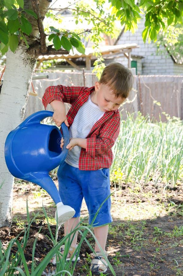 Kleiner Junge, der das Gemüse wässert stockfoto