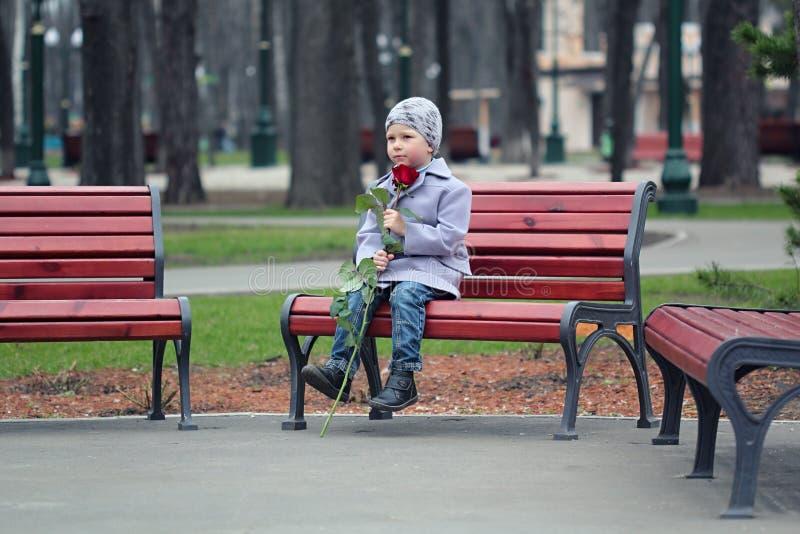 Kleiner Junge, der in den Park wartet stockfotos