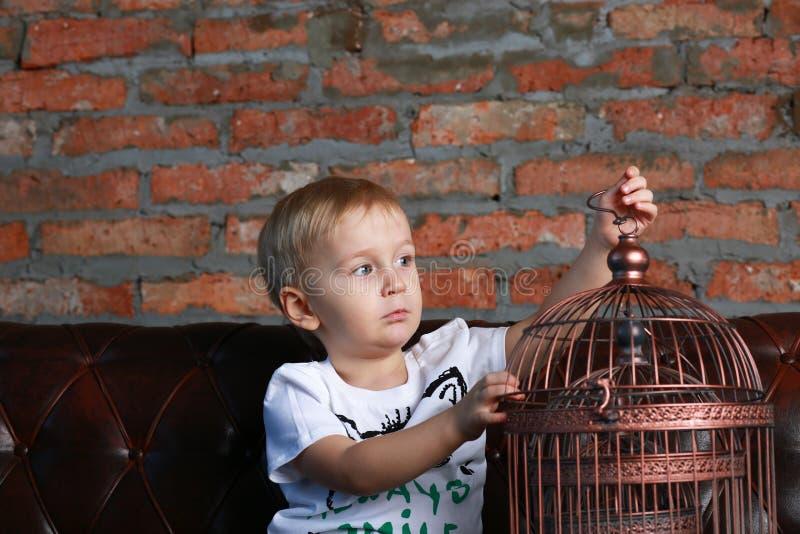 Kleiner Junge, der den Vogelkäfig betrachtet lizenzfreie stockbilder