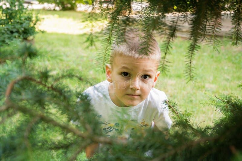 Kleiner Junge, der draußen lächelt stockfoto