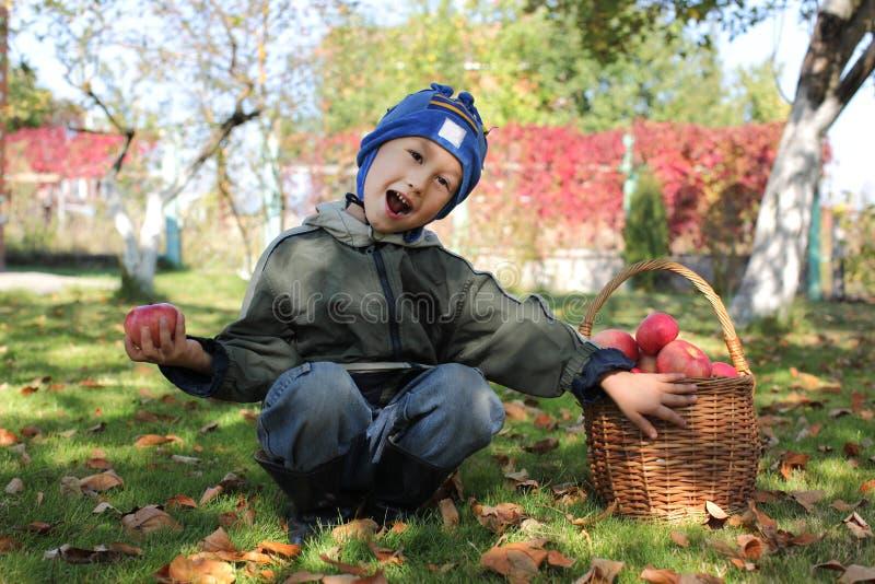Kleiner Junge, der draußen mit Äpfeln aufwirft lizenzfreie stockfotos