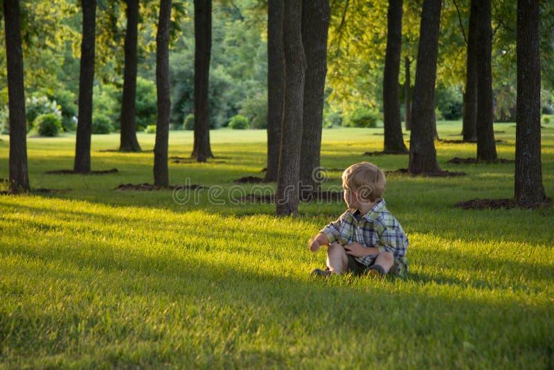 Kleiner Junge, der im Gras sitzt lizenzfreie stockfotografie