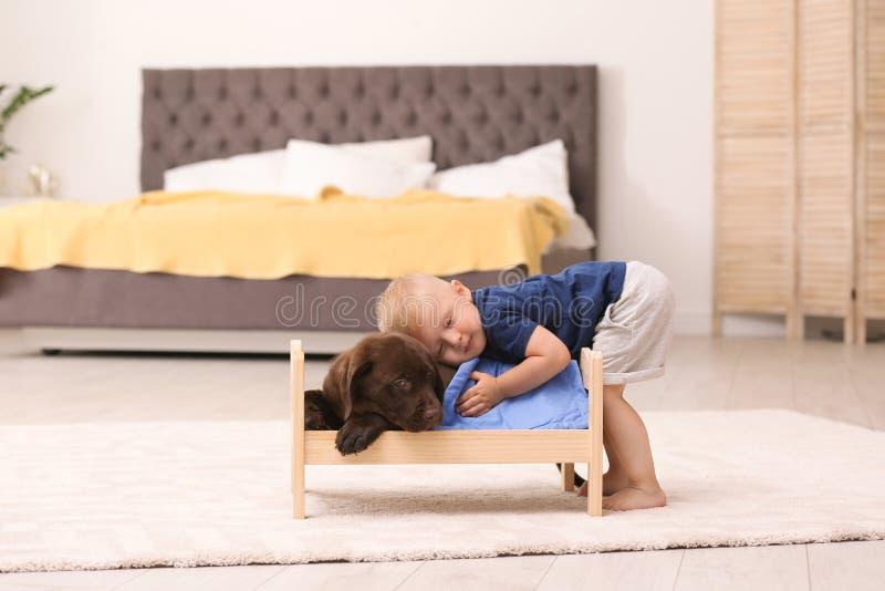 Kleiner Junge, der mit entzückender Schokolade Labrador spielt lizenzfreies stockbild