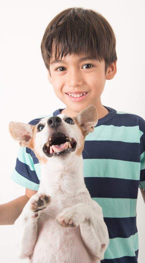 Kleiner Junge, der mit seiner Freundhundesteckfassung Russel auf Weiß spielt stockfotografie