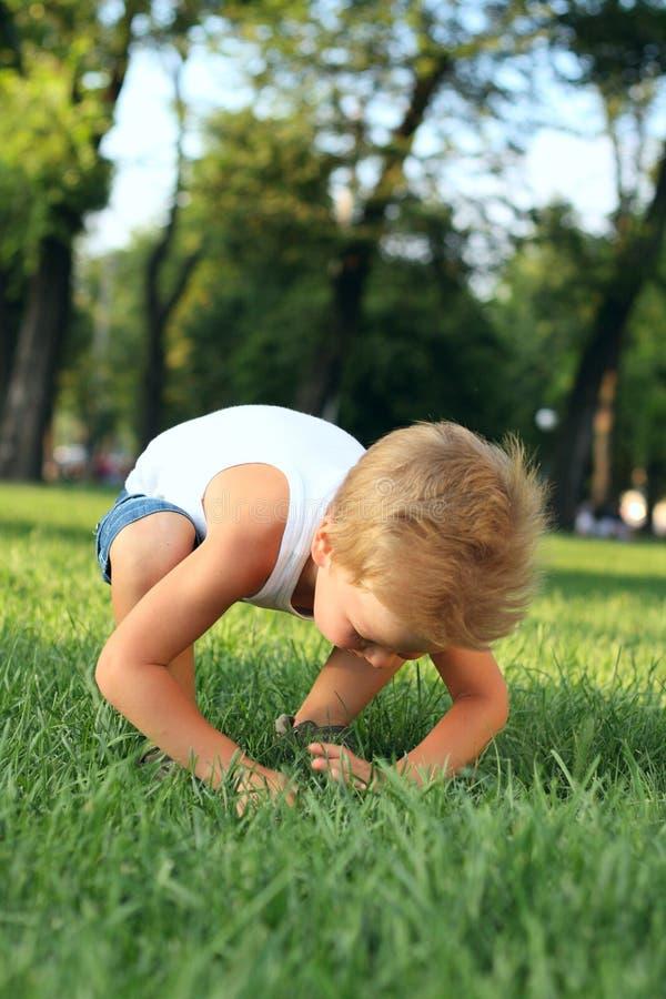 Kleiner Junge, der nach etwas im Gras sucht stockfotografie
