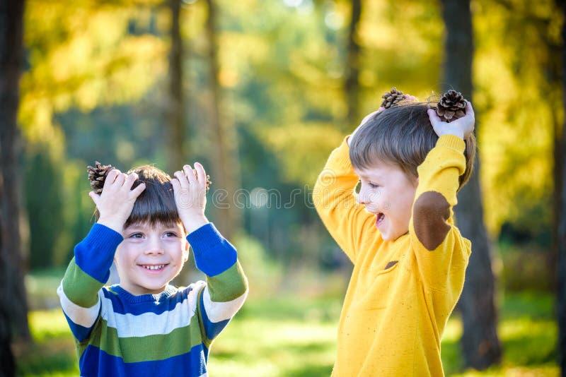 Kleiner Junge der netten Geschwister zwei, der draußen zusammen mit zwei großen Kiefernkegeln spielt stockfoto