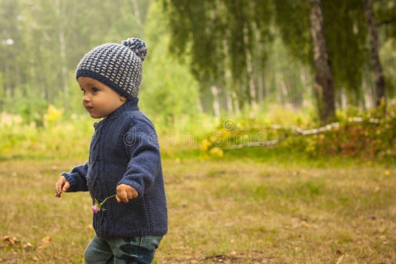 Kleiner Junge, der während der wandernden Tätigkeiten im Wald geht stockfoto