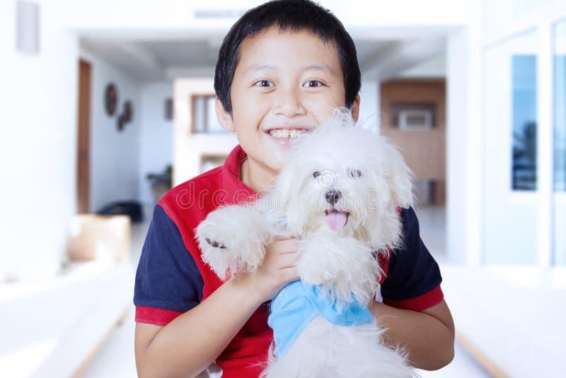 Download Kleiner Junge, Der Zu Hause Maltesischen Hund Umarmt Stockfoto - Bild von freundlich, haarig: 90237060