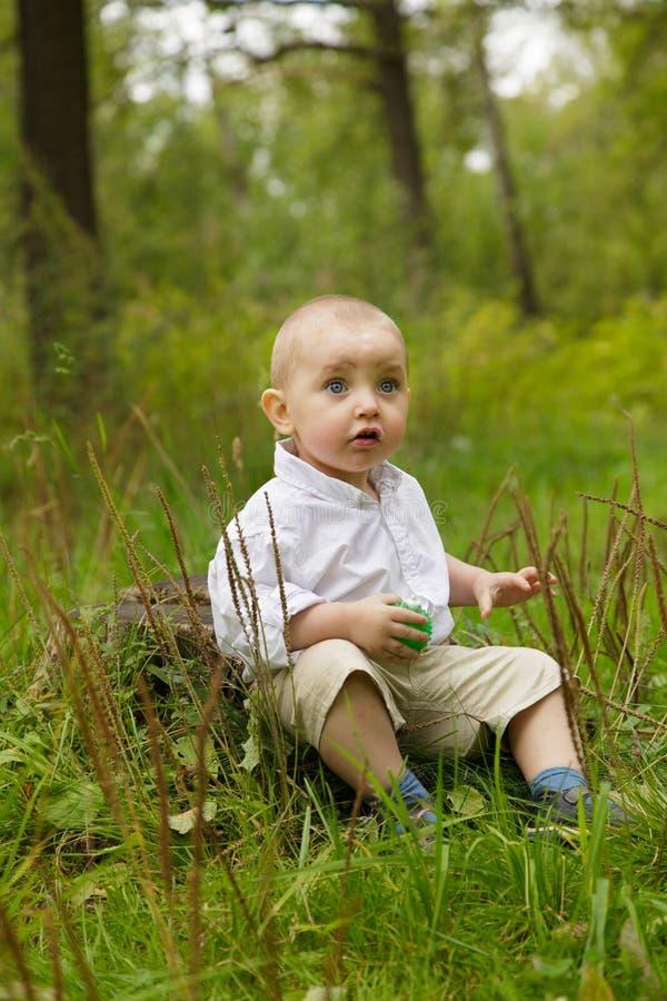 Kleiner Junge im Holz stockfotografie