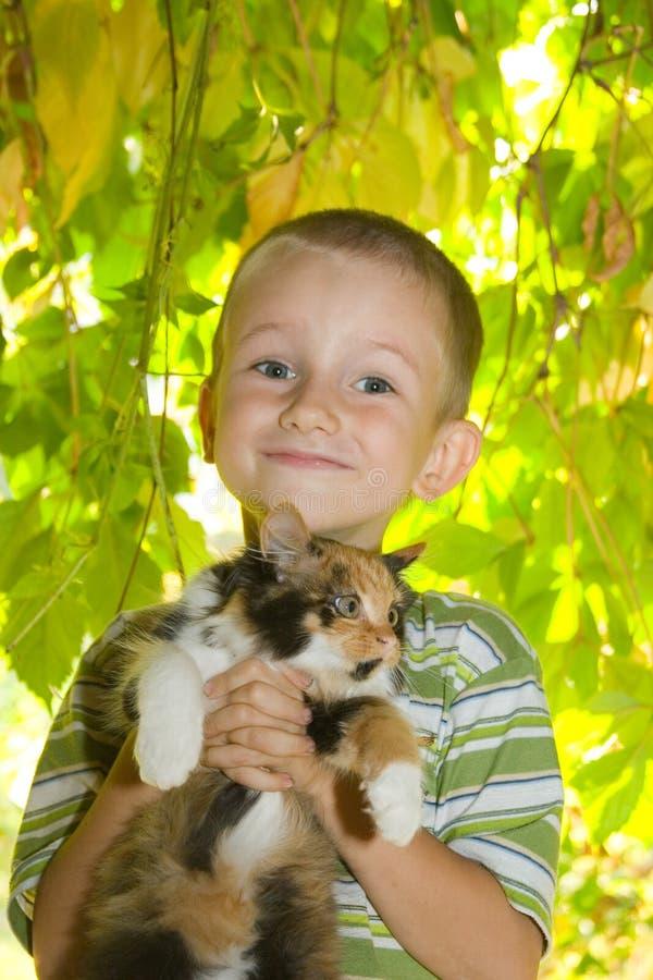 Kleiner Junge mit einem Kätzchen stockfotografie