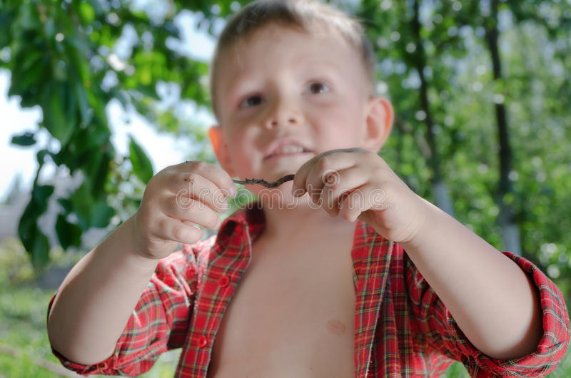 Kleiner Junge mit einem Regenwurm in seinen Händen lizenzfreie stockfotografie