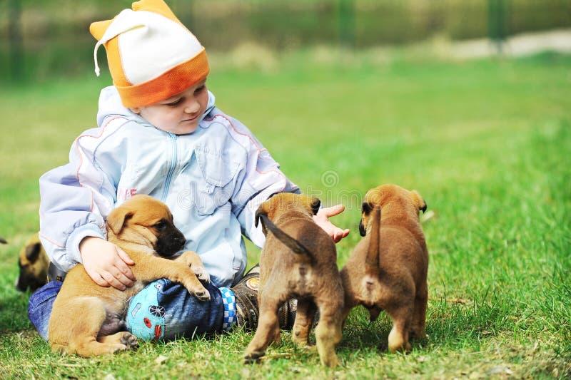Kleiner Junge mit Welpen stockbilder