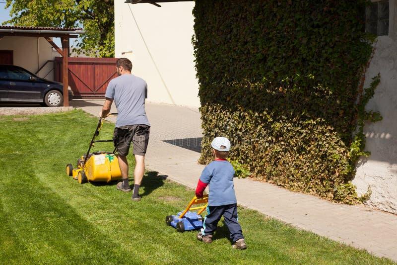 Kleiner Junge schnitt das Gras stockfotografie