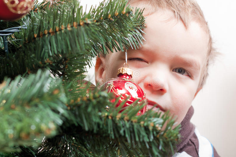 Kleiner Junge sucht heraus nach Weihnachtsbaum stockfoto