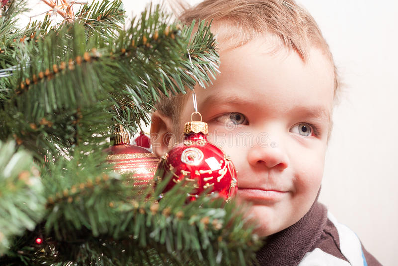 Kleiner Junge sucht heraus nach Weihnachtsbaum stockfotos