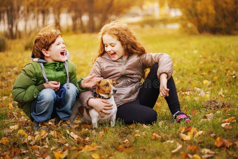 Kleiner Junge und Mädchen mit ihrem Welpen heben Russell in Herbst outdoo lizenzfreie stockfotografie