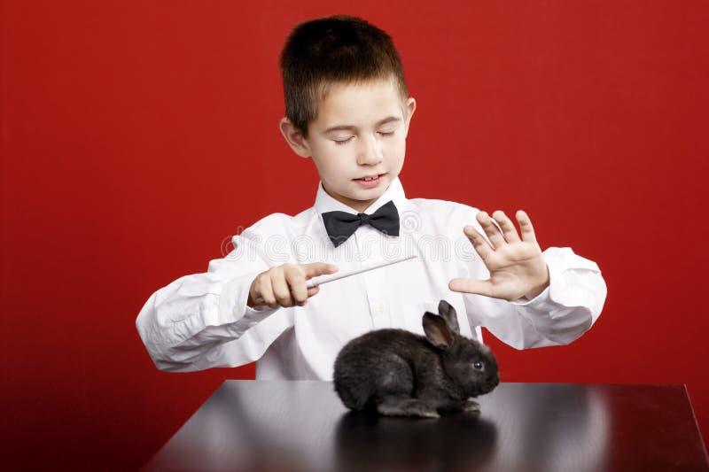 Kleiner Magier mit Kaninchen lizenzfreie stockfotos