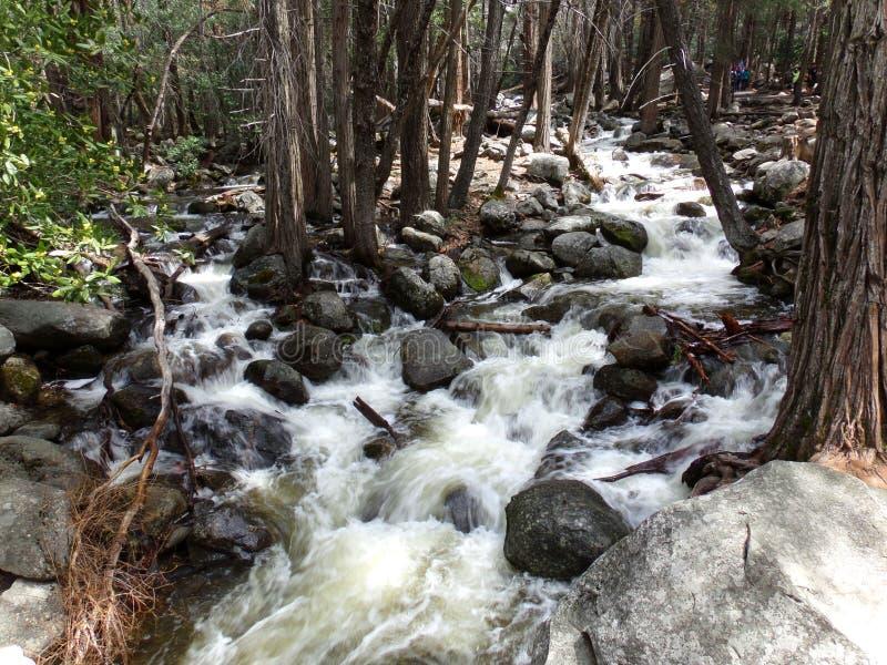 Kleiner Nebenfluss, das Wasser, das über die Felsen nahe Bridalveil kaskadiert, fällt - Yosemite Nationalpark, Sierra Nevada, Kal lizenzfreie stockbilder