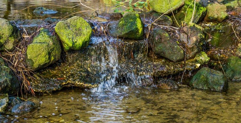 Kleiner Nebenfluss im Abschluss oben mit einem kleinen Wasserfall, Naturlandschaft, Wasserfrühling in den Bergen lizenzfreie stockbilder