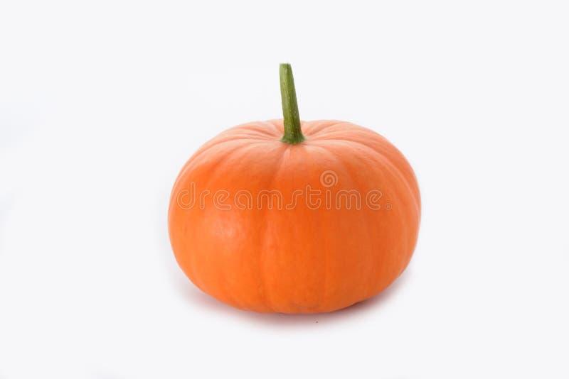 Kleiner orange Kürbis stockbild