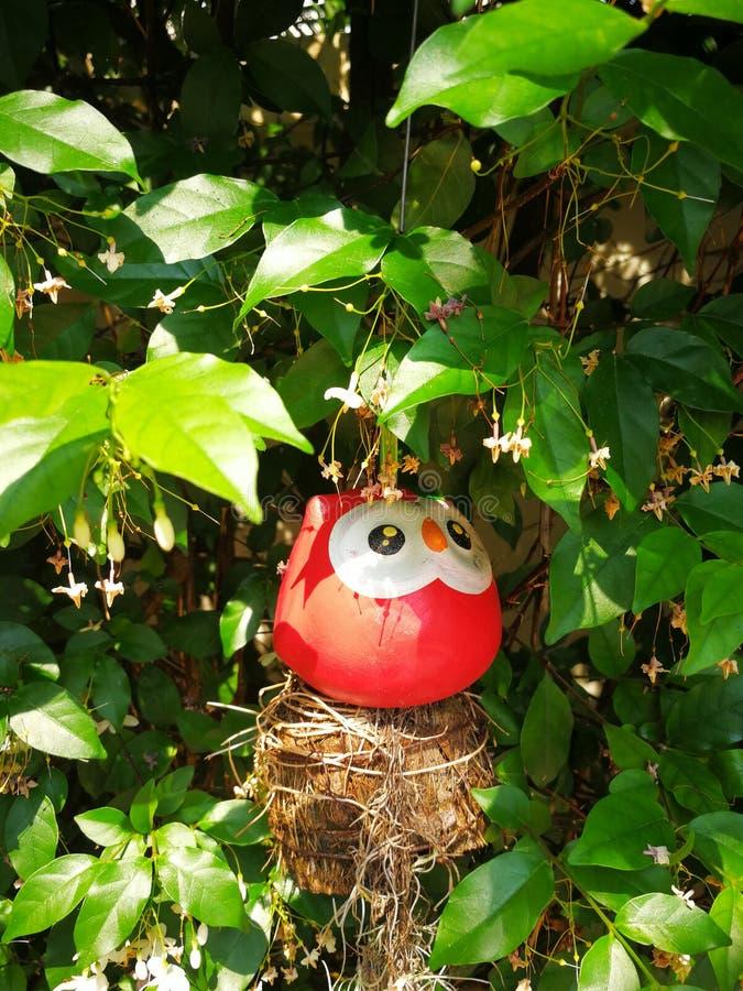 Kleiner roter Vogel stockbild