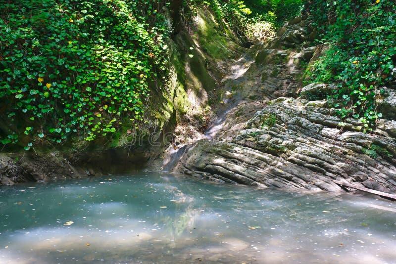 Kleiner schöner Gebirgssee mit stehendem Gewässer und Nebenfluss, der in ihn unter dem Dschungel fließt lizenzfreie stockbilder