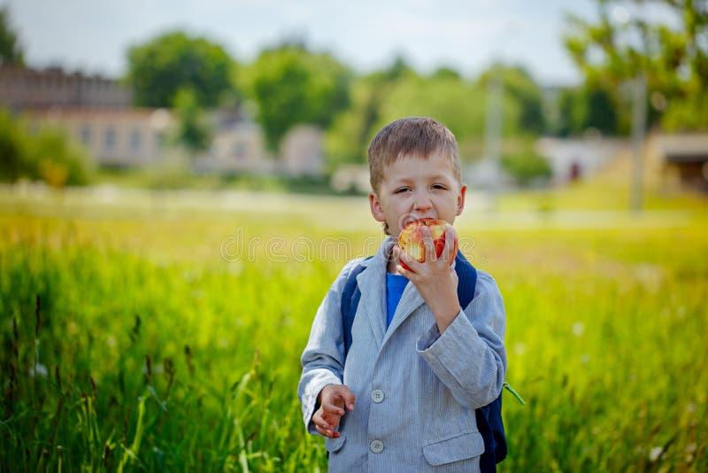 Kleiner Schüler mit Rucksack und essen Apfel Zurück zu Schule lizenzfreies stockbild