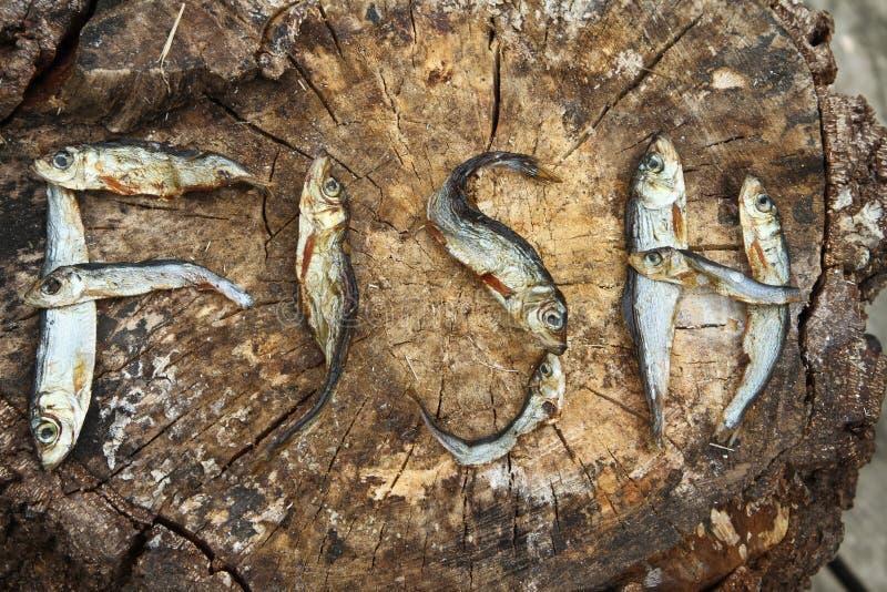 Kleiner Trockenfisch, der die Wortfische bildet lizenzfreie stockfotos