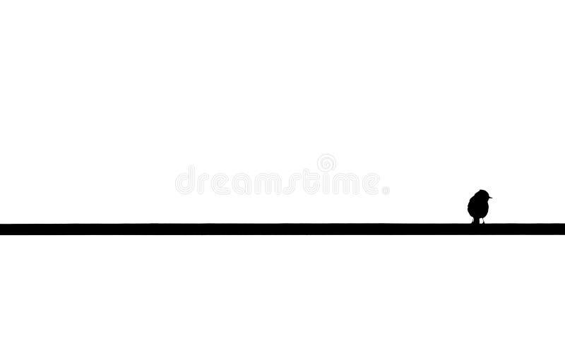 Kleiner Vogel über dem Kabel und weißem Hintergrund, die draußen schauen stockfotos