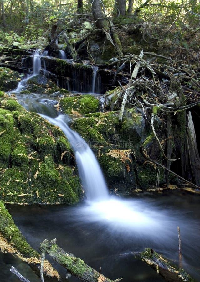 Kleiner Wasserfall. stockbild