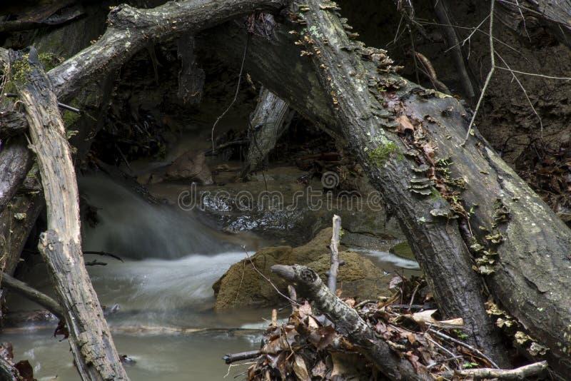 Kleiner Wasserfall, der durch R?ckstand hetzt lizenzfreies stockbild