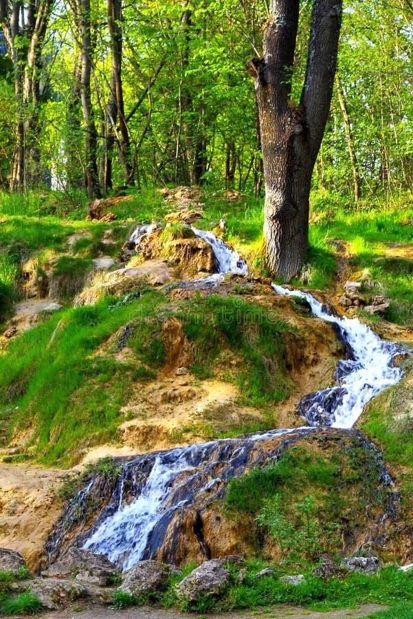 Kleiner Wasserfall im Frühjahr stockbilder