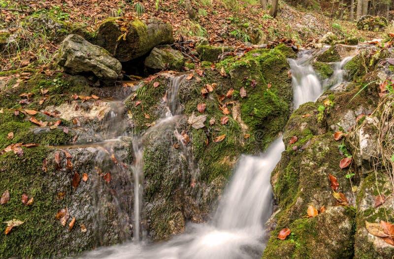 Kleiner Wasserfall im Wald stockfotos