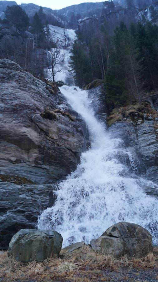 Kleiner Wasserfall in Norwegen-Bergen lizenzfreies stockbild