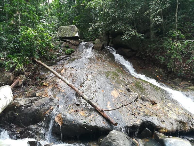 Kleiner Wasserfall in tropischen Regenwald in Sri Lanka lizenzfreies stockfoto