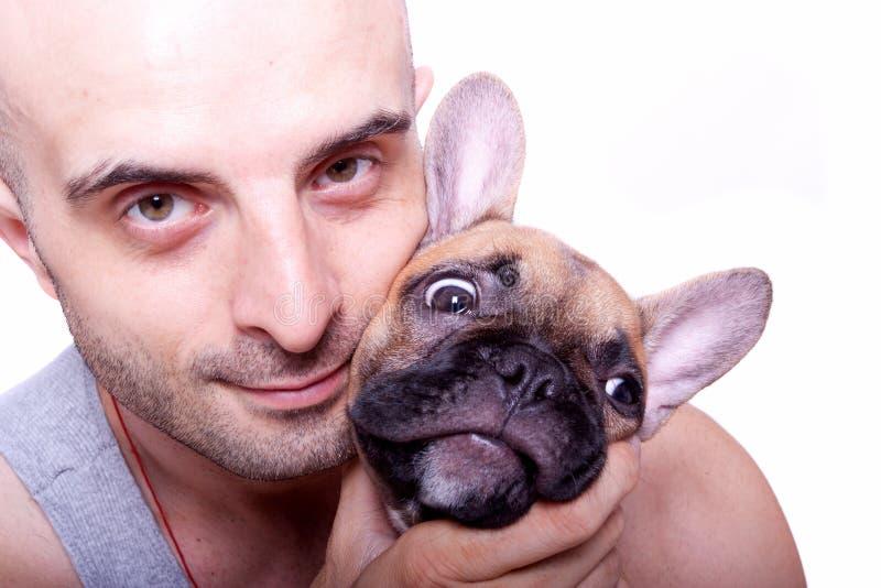 Kleiner Welpe der französischen Bulldogge mit einem Kerl stockfoto