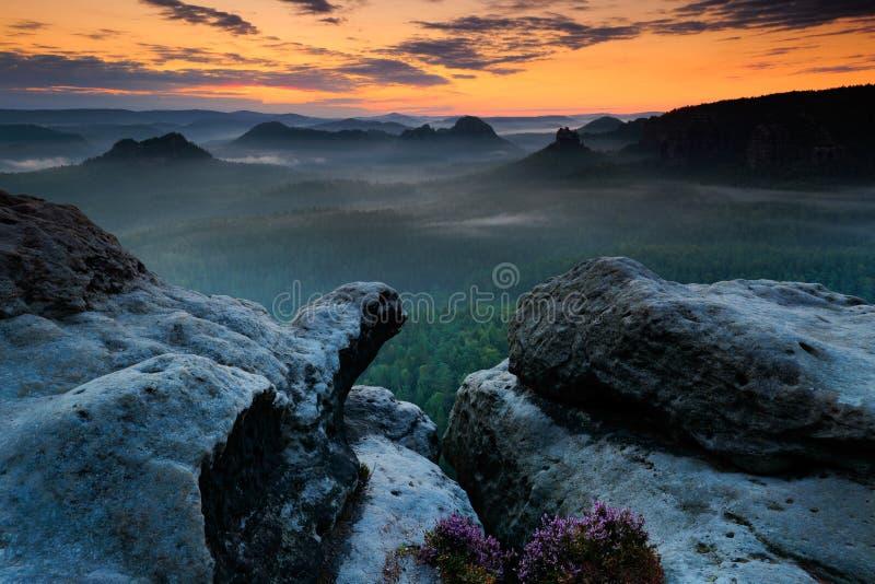 Kleiner Winterberg, härlig morgonsikt över sandstenklippan in i den djupa dimmiga dalen i Sachsen Schweiz Sandsten når en höjdpun royaltyfri foto