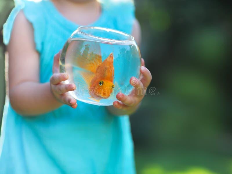 Kleines Baby, das ein fishbowl mit einem Goldfisch auf einer Natur hält stockfoto
