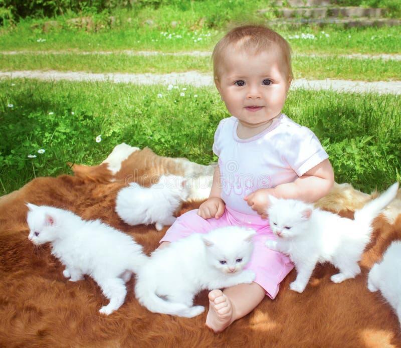 Kleines Baby, das mit weißen Kätzchen am sonnigen Sommertag im Park spielt stockfotos