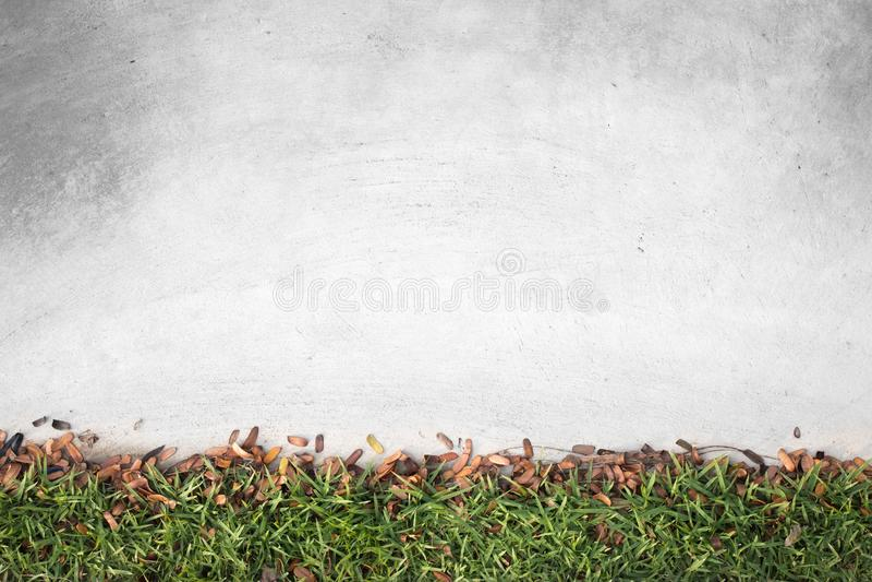 Kleines Blatt Browns und grünes Gras mit altem konkretem Boden im Garten lizenzfreie stockfotografie