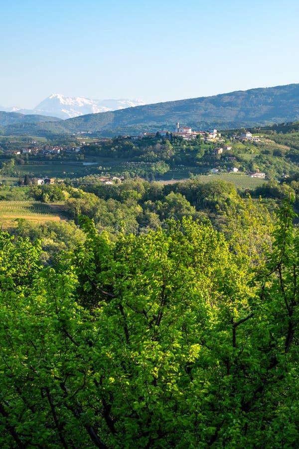 Kleines Dorf Åmartno in Brda in Slowenien mit Julian Alps lizenzfreies stockfoto