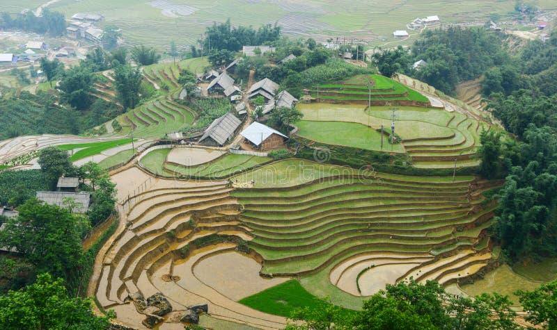 Kleines Dorf mit Reisfeldern in Lai Chau, Vietnam stockbilder