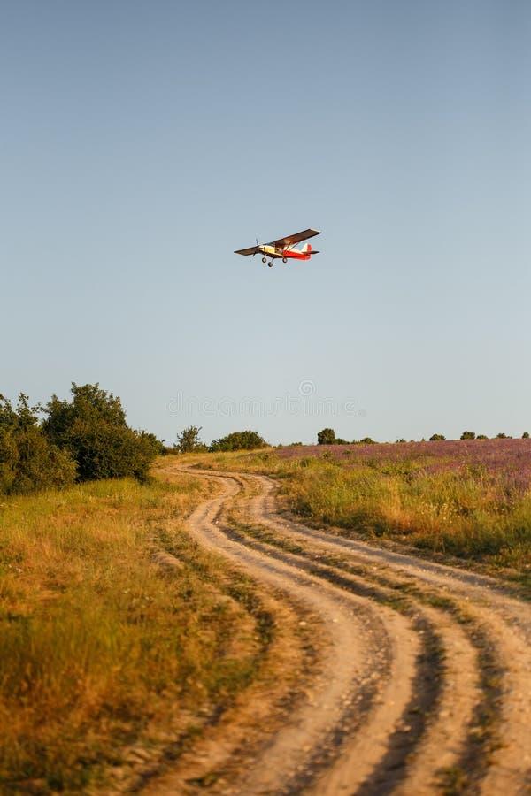 Kleines Flugzeug fliegt über Landstraße und -lavendel stockfotos