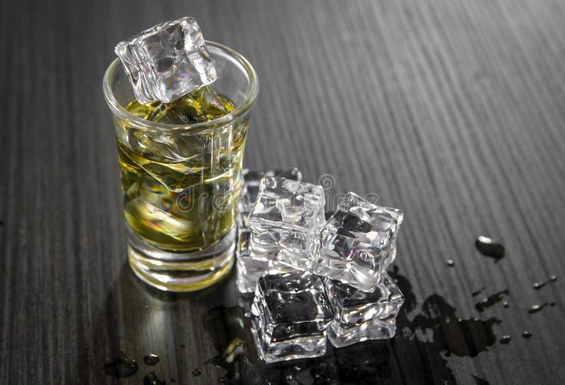 Kleines Glas des starken Alkoholgetränks mit Eiswürfeln lizenzfreie stockfotografie