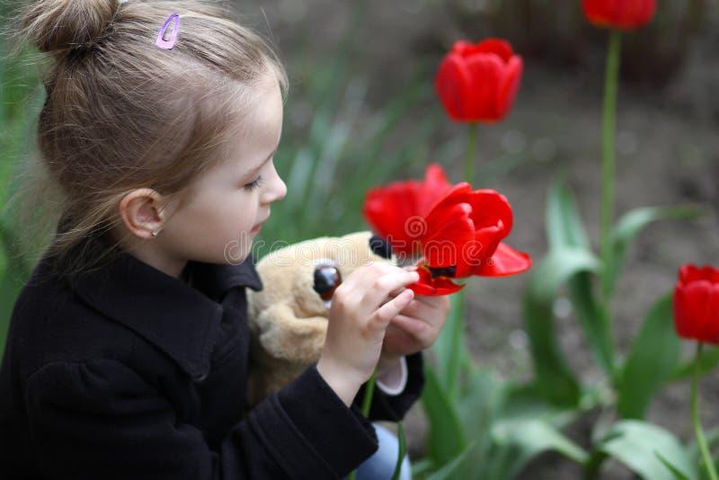 Kleines hübsches Mädchen kleines Mädchen betrachtet Blumenfrühlingstulpen stockfotos