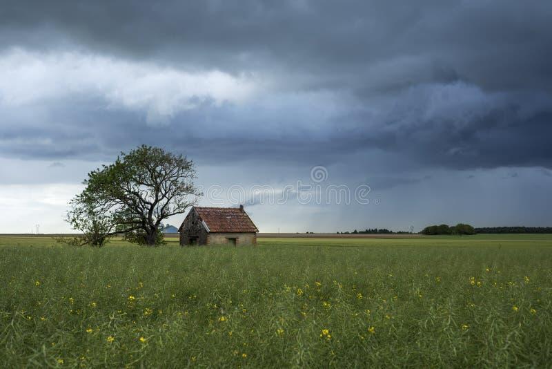 Kleines Haus auf dem Gebiet lizenzfreie stockfotos