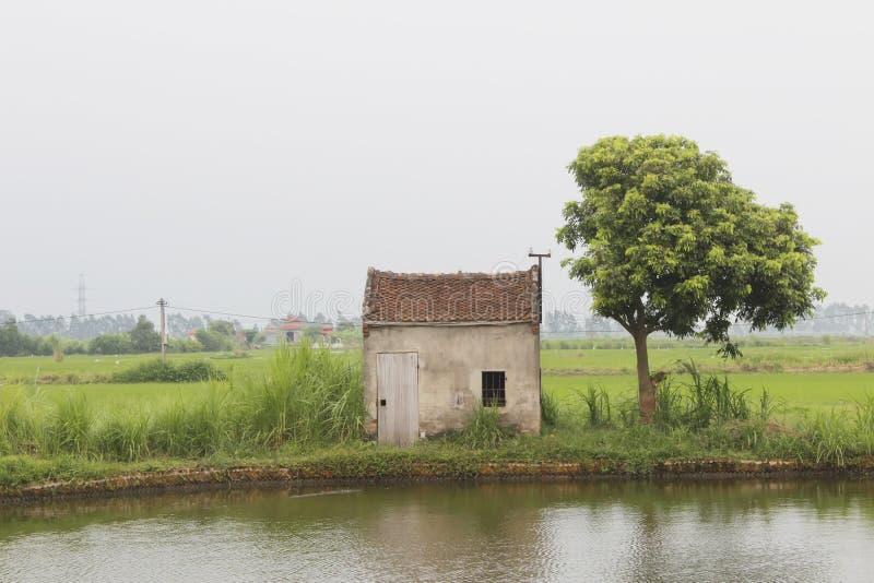 Kleines Haus im See stockfoto. Bild von winkel, blau - 56008466