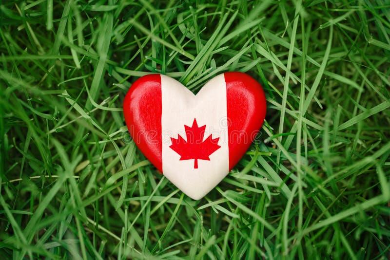 kleines Herz mit dem roten weißen kanadischen Flaggenahornblatt, das draußen im Gras auf grünem Waldnaturhintergrund, Kanada-Tag  stockfotografie