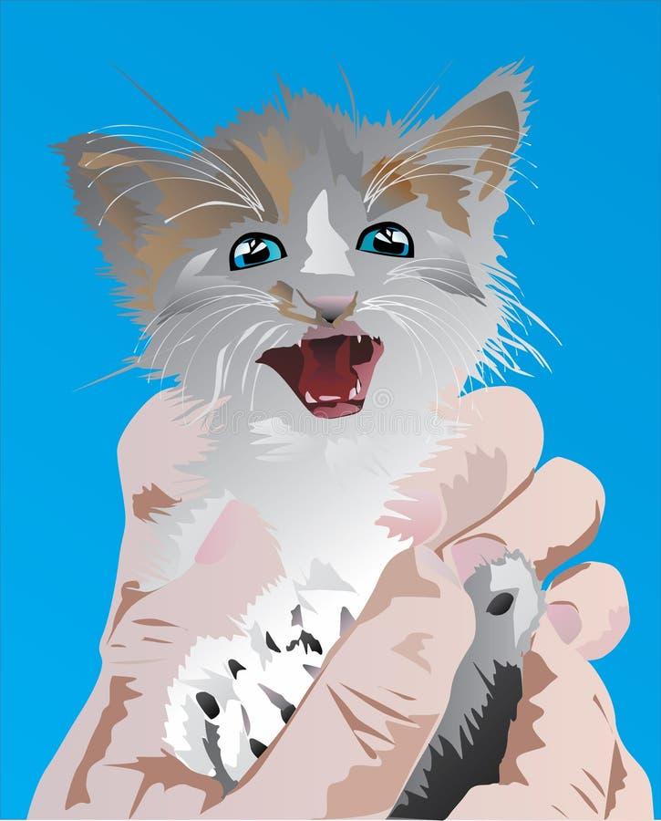 Kleines Kätzchen auf Händen stock abbildung