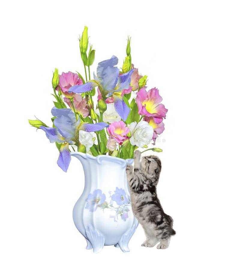 Kleines Kätzchen steht nahen antiken Porzellankrug mit Blumenstrauß von lizenzfreie abbildung